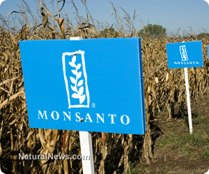 Monsanto-Crops-Sign